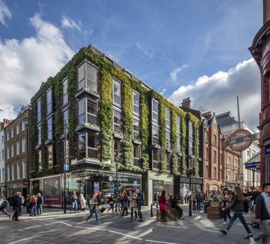 Living Wall, Covent Garden